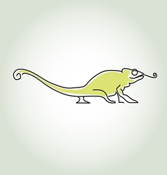Chameleon in minimal line style vector