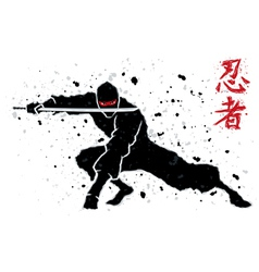 Ninja vector