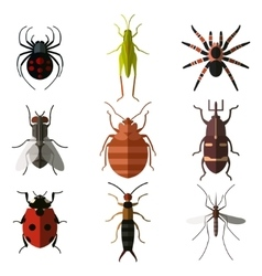 Set of insect flat icons3 vector
