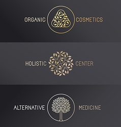 Set of logo design templates vector