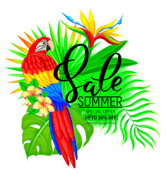 summer sale bright composition with parrot vector image