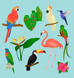 Tropical birds flamingo and exotic parrot vector