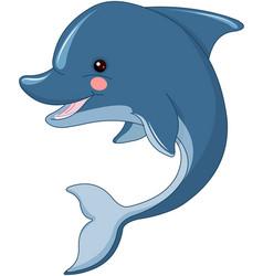 cute dolphin vector image