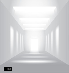 Hall perspective vector image