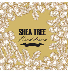 Background template with shea tree branch nuts vector