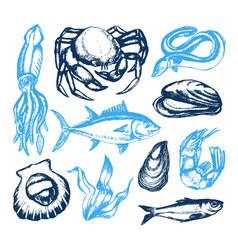 Delicious seafood - vintage vector