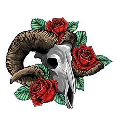 goat skull goat devilish vector image
