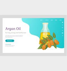 Information about argan oil in bottle argania vector