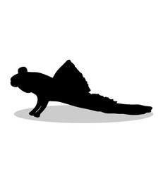 Mudskipper fish black silhouette aquatic animal vector