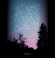 Pisces zodiac constellations sign with forest vector