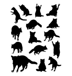 raccoon silhouette vector image