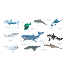 Set dolphin anglerfish swordfish vector