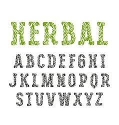 Slab serif decorative font with herbal texture vector
