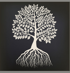 Tree with root system silhouette isolated on dark vector