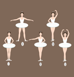 Young dancer performs the five basic ballet vector