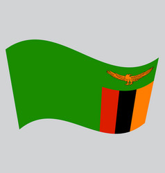 flag of zambia waving on gray background vector image vector image