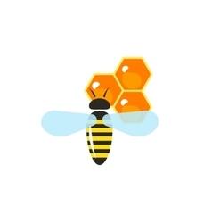 Flying bee pollinating wax honeycombs vector image