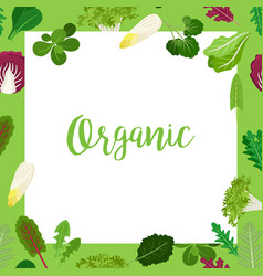 organic banner with leaves square frame vector image vector image