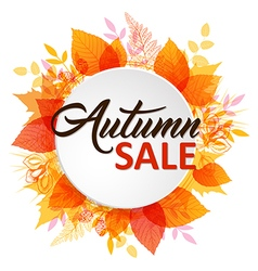 Abstract autumn banner with leaves vector image