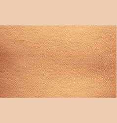 Background texture beige natural leather grain vector