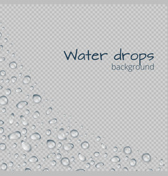Boundary with water droplets vector
