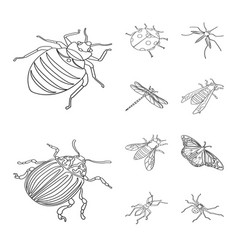 Fauna and entomology symbol vector