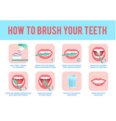 how to brush teeth correct tooth brushing vector image
