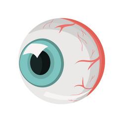 Human eye part body isolate vector