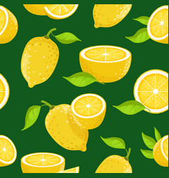 lemon and different slices on dark background vector image