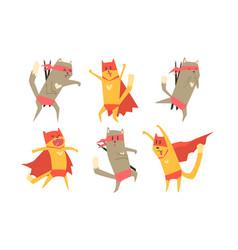 ninja dog and cat characters set funny superhero vector image