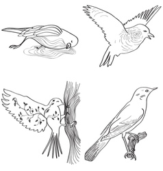 Storytelling birds vector image