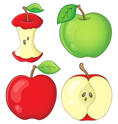 Various apples collection 1 vector