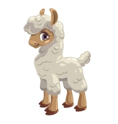 Little cute lama vector image