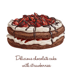 delicious chocolate cake with strawberries vector image