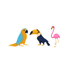 Bright exotic birds with pink flamingo and parrot vector
