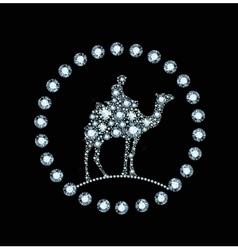 Diamond camel vector image
