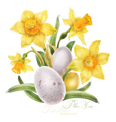Easter watercolor bouquet with daffodil and bird vector