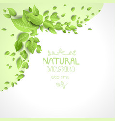 Eco frame with green leaves vector image