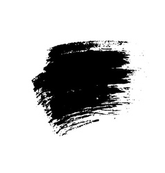 Grunge brushes texture vector