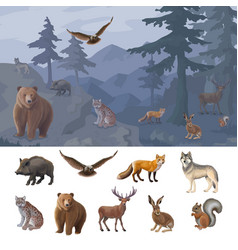 cartoon colorful forest animals set vector image vector image