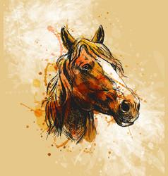 colored hand sketch horse head vector image