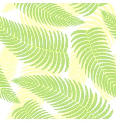 ferns background vector image vector image
