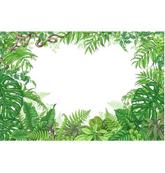 Tropical plants rectangle frame vector