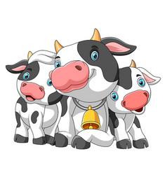 Cute cartoon family cow vector