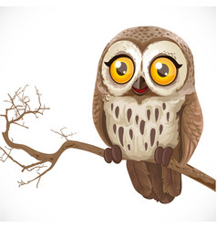 cute cartoon owl sitting on a branch isolated on vector image