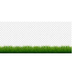Grass border set isolated transparent background vector