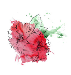hand drawn hibiscus flower vector image
