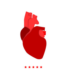 human heart icon different color vector image