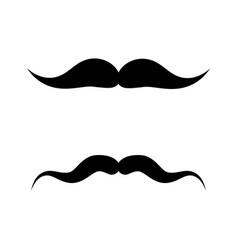 moustache icon design vector image