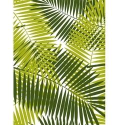 Palm Leaf Frame Background vector
